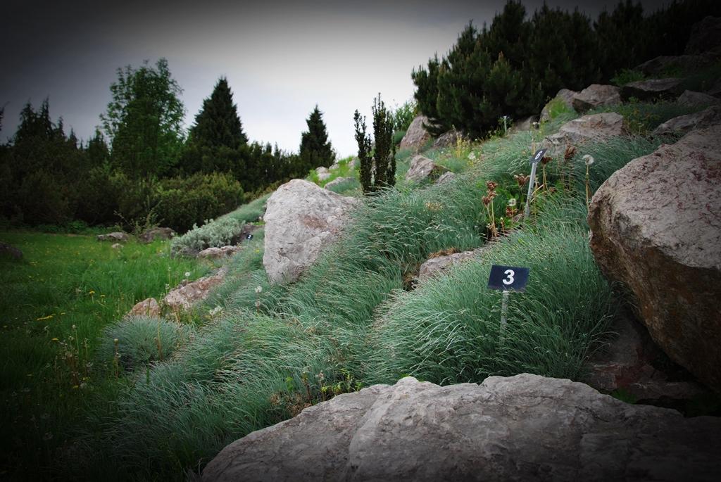 ogród botaniczny powsin