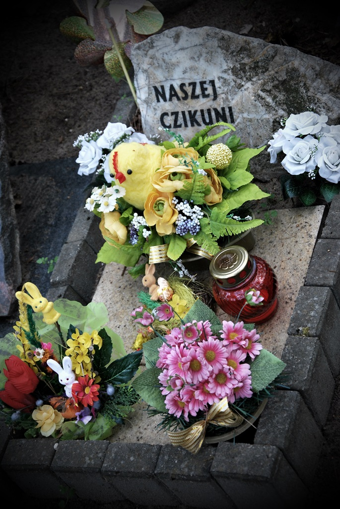 cmentarz zwierząt