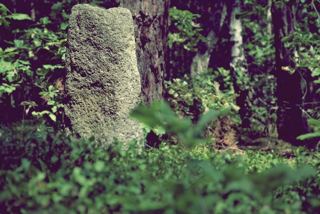 cmentarz żydowski w jadowie