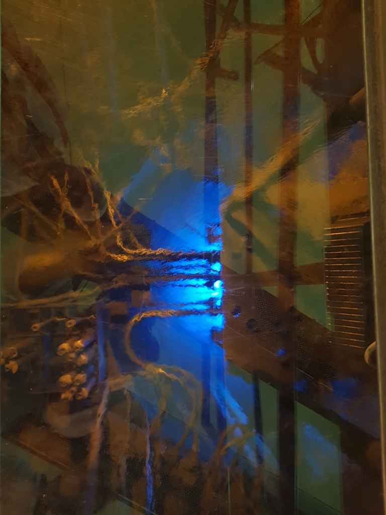 reaktor maria