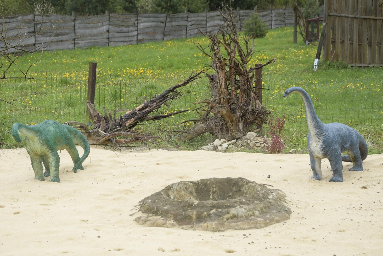 dinozaury krasnobród