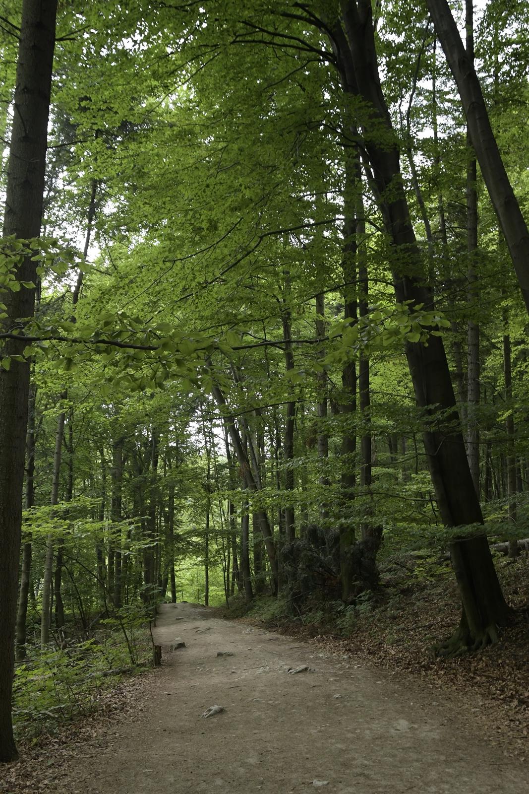 ojcowski park narodowy atrakcje
