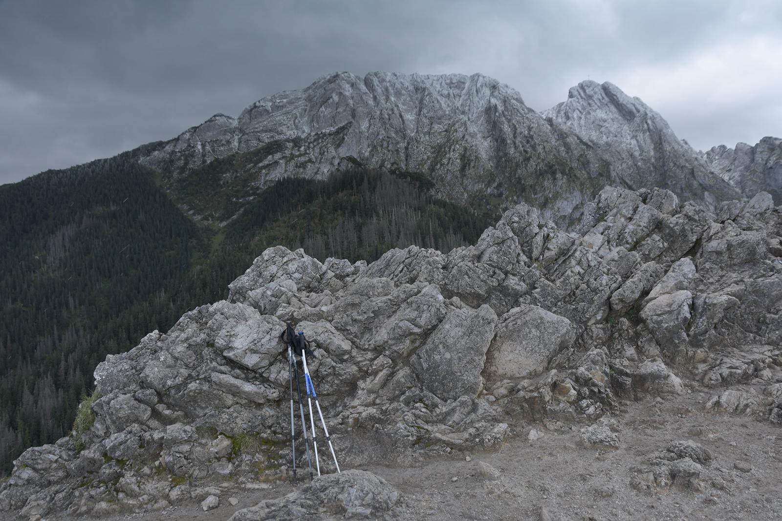 sarnia skała