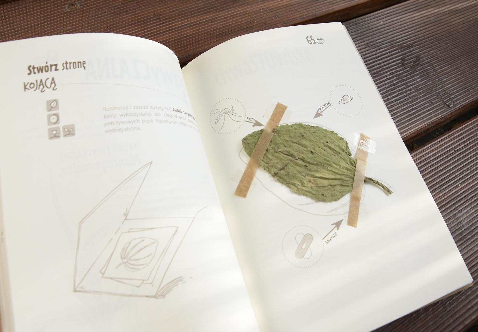 jak zrobić zielnik