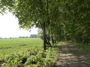 mądre zwiedzanie parków i rezerwatów